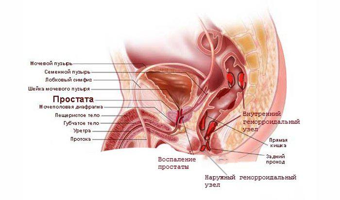 Препараты улучшающие кровообращение в сосудах нижних конечностей лечение